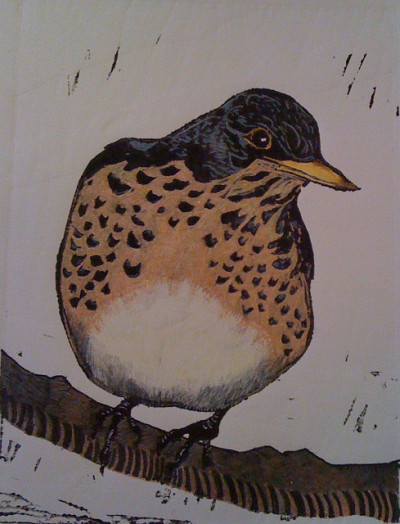 Song Thrush by maureen nathan on Flickr.hand coloured linocut