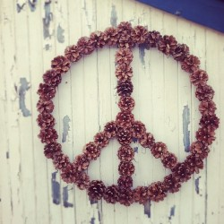 "honestly-wtf:  ""Sending PEACE, love & joy with my DIY pine cone wreath!"""
