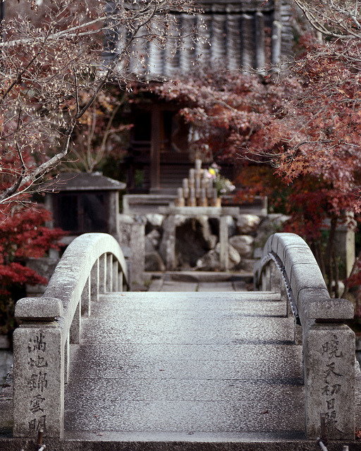 agoodthinghappened:  bridge【eikandou】 by yuta35 on Flickr.