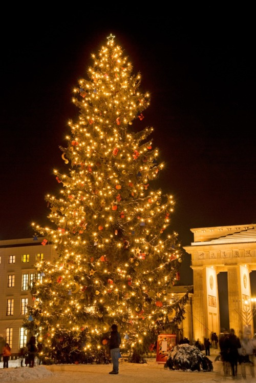 A beautifully festive tree at the Brandenburg Gate in Berlin, Germany.