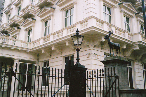 sarcastical:  IMG_0012 (by lauren doughty)