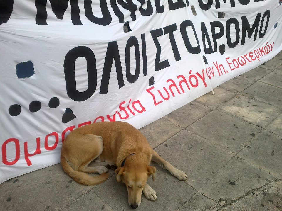 "14 oct 2011, the banner reads ""all in the streets""  Dear RiotDog… We Love You! <3"