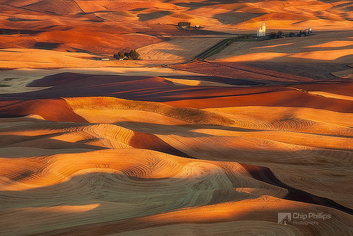 Palouse Harvest Glow (by Chip Phillips)