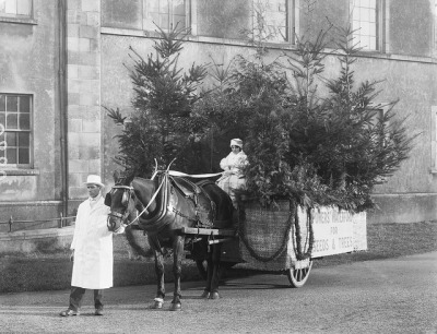 Is she old enough to drive that thing? by National Library of Ireland on The Commons on Flickr.