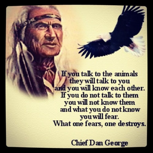 Loved this quote since I was very young, it not applies to animals but also to people as well… Artist - Unknown www.fearmanphoto.com