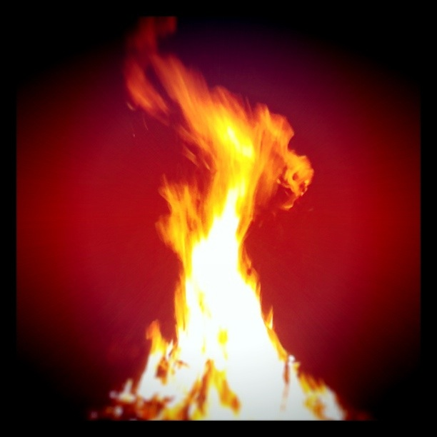 Photography: Fire, its a gas.