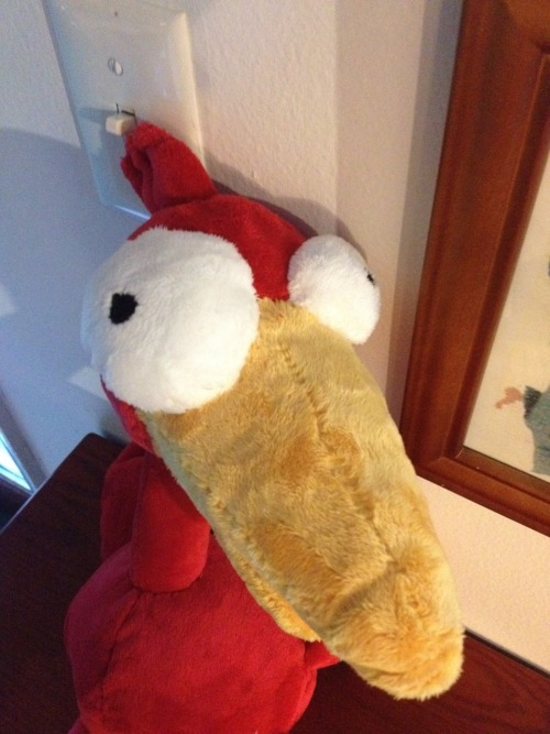 mykechilian:  …and in return, Tara made me a plushy of my bird book character.  *okay face*  Stealing these shots you took of him for my sites!
