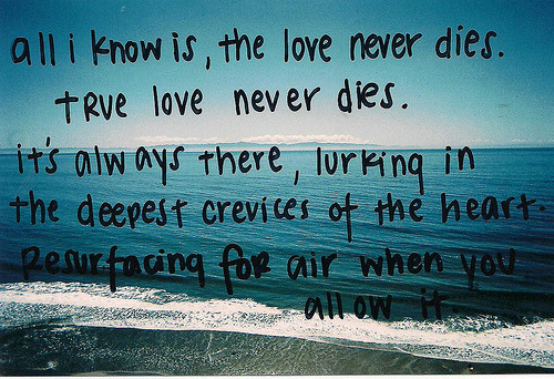 thelovenotebook:  THE LOVE NOTEBOOK