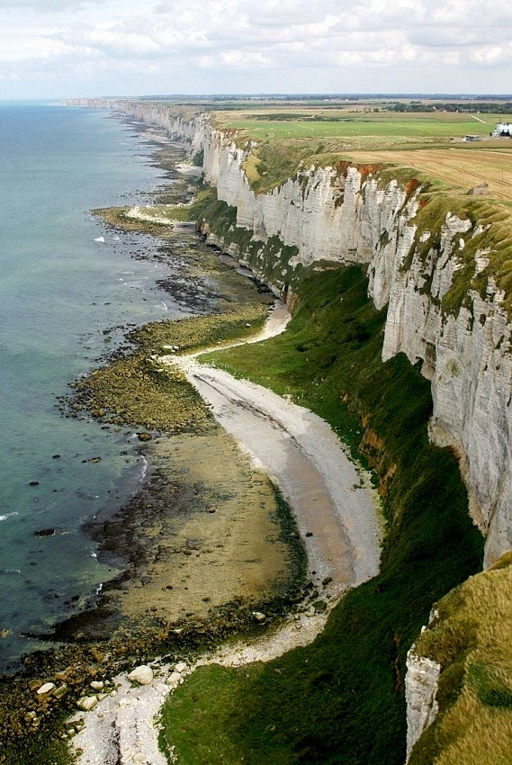 ysvoice:  | ♕ |  Cliffs of Côte d'Albâtre, Normandy  | by © Antoine Grondeau   Welcome back my old post!