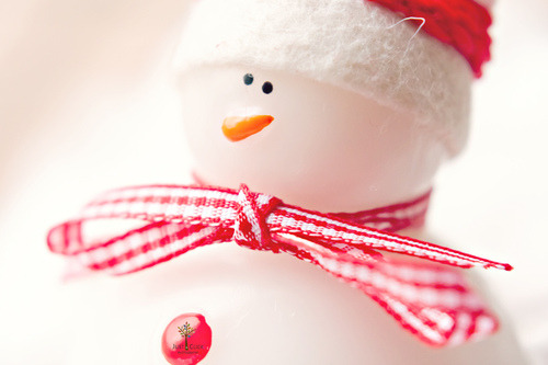 kiss-me-in-the-snow:  Frosty the snowman | Flickr - Photo Sharing! on We Heart It. http://weheartit.com/entry/19501547