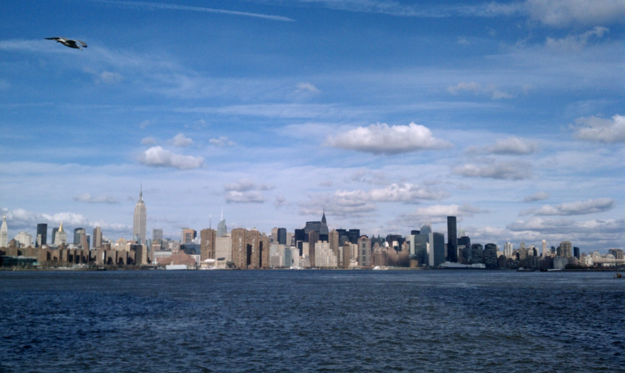 view from the edge pool, nyc10:30am, 75°2 mile swim