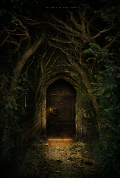 heathenmom:  Secret Door by *GIN7GIN8