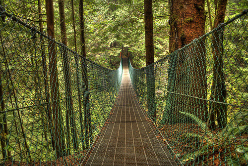 photographic-energy:  Juan de Fuca Trail: Suspension Bridge (by Brandon Godfrey)