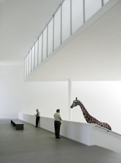 soundthat:  Altered Reality VII - Two Gentlemen and a Giraffe by yushimoto_02 [christian]