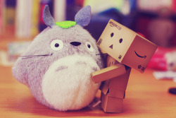danbo and ………. <3