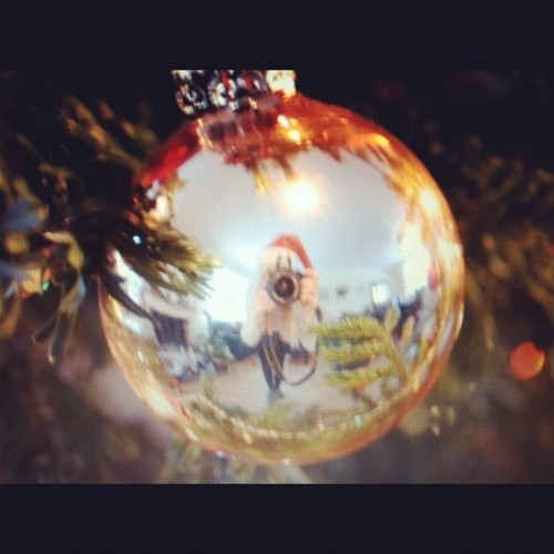 #christmas#tree#me#girl#blonde#camera#pretty#gold#ball#decoration#picture#photography #amazing#pretty  (Taken with instagram)