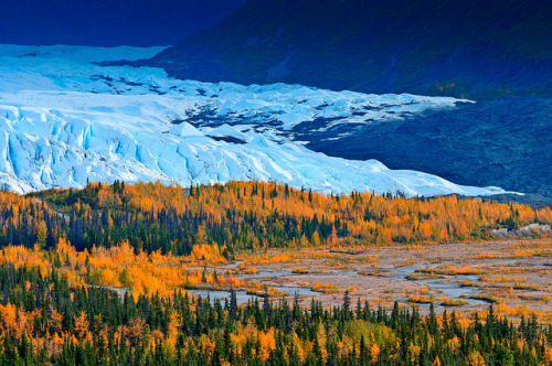 100901_JTSg_2259_h.jpg by panafoot on Flickr.alaska's crazy beautiful!