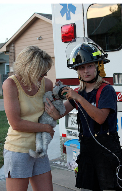 rescued from a burning house  画