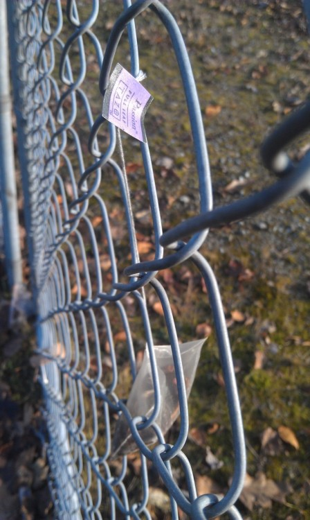 lifeaquatic:  Teabag on the fence.  FUNNY BECAUSE THESE DAYS MOST TEABAGGERS ARE SO TOTALLY NOT THIS