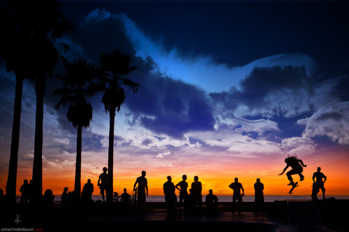 Venice Beach gallery at my website here. (c) Zohar Lindenbaumhttp://zoharlindenbaum.com
