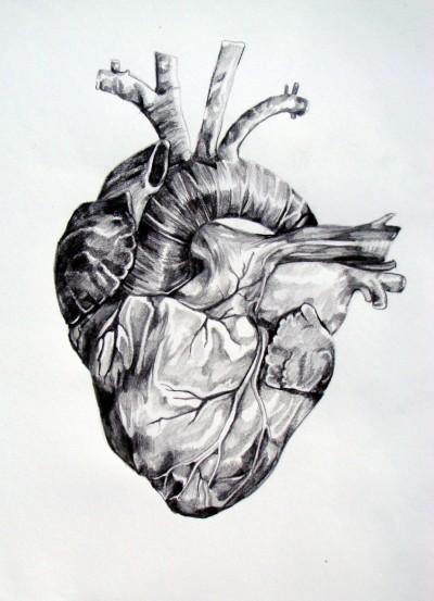 #illustration, #submission