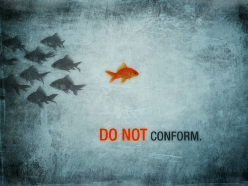 Do Not Conform! amyingvorryou:  Do Not conform. Love
