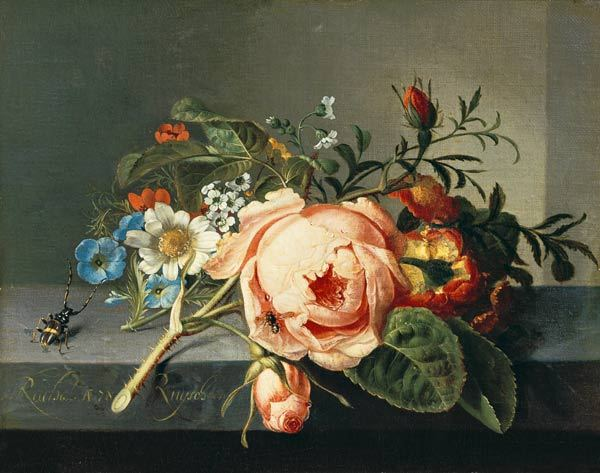 Ruysch Rachel, still life with flowers