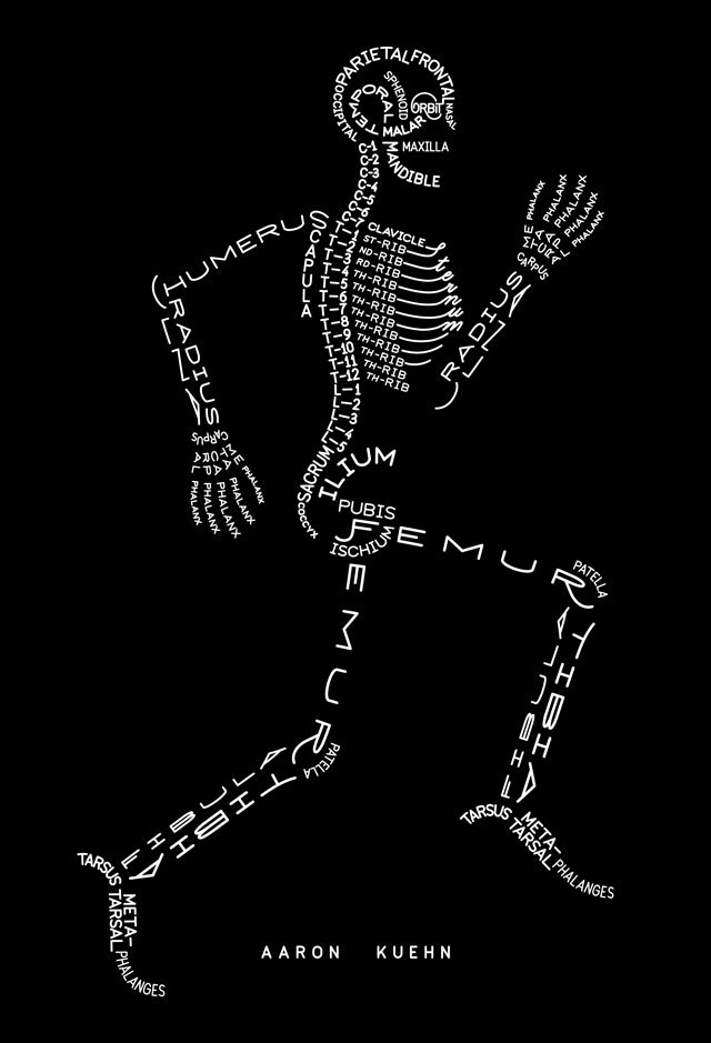 Skeleton Typogram, A Human Skeleton Illustration Made Using The Words For Each Bone