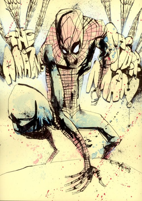 The Amazing Spider-Man - by Jim Mahfood