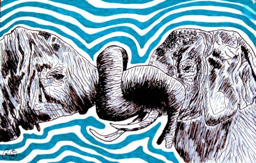 Elephants Intertwined by Cassie O'Neil