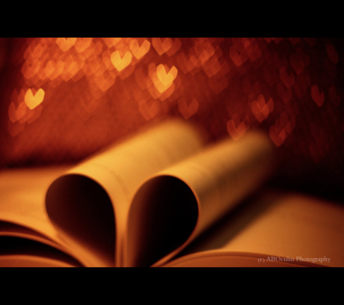 A book of Love surrounded by Love