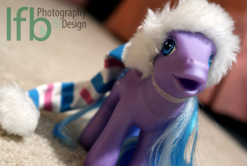 project365/My Favorite Things: My Little Pony (day 50/365)