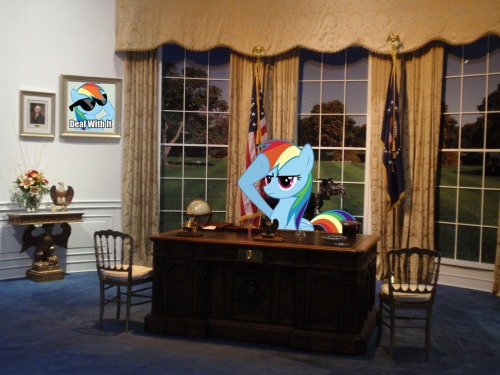 RAINBOW DASH 2012 Made by me