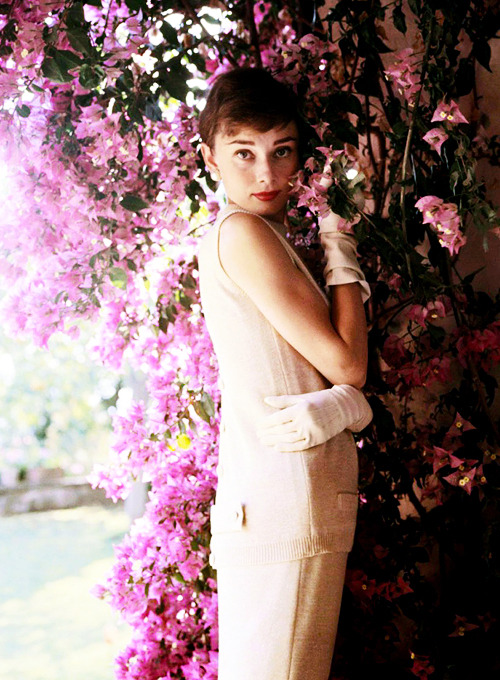 missavagardner:  Audrey Hepburn photographed by Bob Willoughby, 1953.