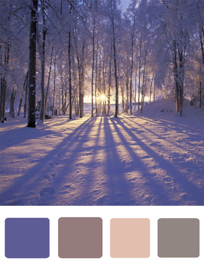 {winter wedding color scheme} http://savetheideas.tumblr.com/