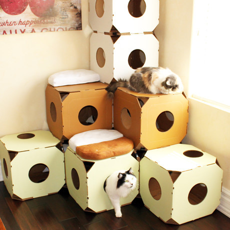 Fab.com Flash Sale: Cat House System Limited quantity.Fab.comCat House System speaks cat: its need to jump, to hide, to nest, to sleep and most of all, to love…a box. With a modern spin on the cat structure, it created the Catty Stack, a contemporary box-like modular system that speaks your feline's language.