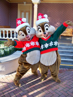 Merry Christmas from Chip n' Dale Taken on November 15, 2009 near Disneyland City Hall in Town Square on Main Street USA, Disneyland (Disneyland Resort, Anaheim, CA) Photo by Loren R. Javier.  This photo can be republished for non-commercial purposes, but only if it contains photo credit and/or link back to the original photo.  Please click photo for rules on the Creative Commons license of this photo.