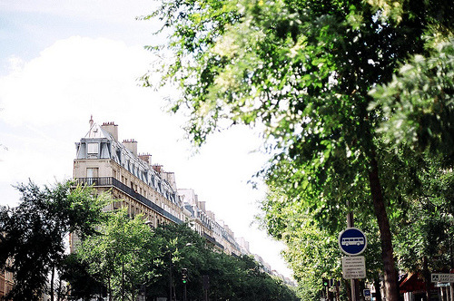 sarcastical:  paris (by samgaetz)