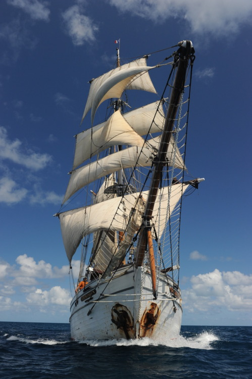 Tall Ship Soren Larsen sailing around New Caledonia, Oct 2011. Marsha Book.