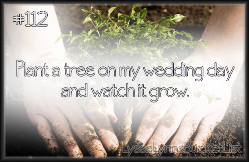 Bucket List #112: Plant a tree on my wedding day and watch it grow.