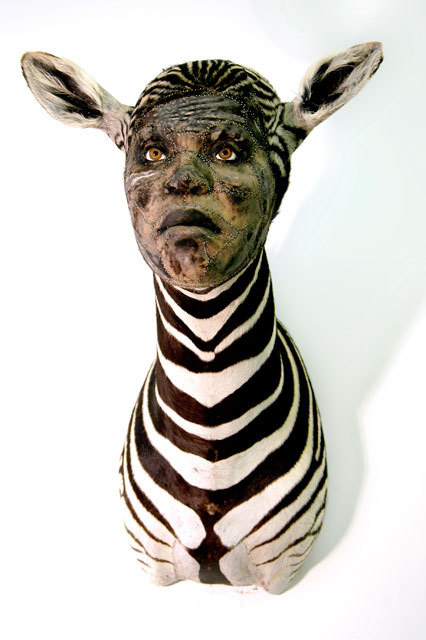 Kate Clark,Matriarch,2009 Medium:Zebra hide, foam, clay, pins, thread, rubber eyes Size:29 x 19.5 x 27 inches