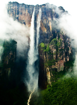 losdramas:  View of the Salto Angel (Venezuela). Angel Falls are the highest falls on earth. They are 979m high, including a 807m free fall.