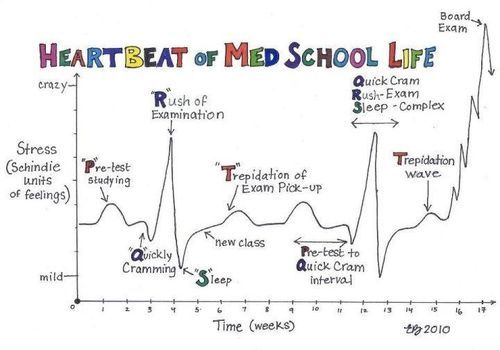 lol med school 4ever!