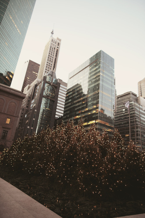 jamesnord:  Park Avenue in December