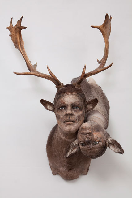 Kate clark, Preoccupied, 2010 fallow deer and mule deer hide, antlers, clay, foam, thread, pins, rubber eyes