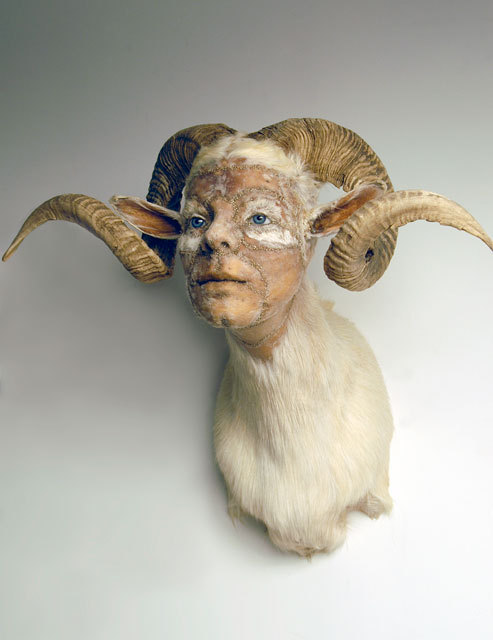 Kate Clark, And She Meant It, 2010 White Ram hide, horns, clay, foam, thread, pins, rubber eyes Size:26 X 25 X  21 inches