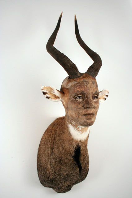 Kate Clark,Composed, 2009 Medium:Antelope hide, antlers, clay, foam, thread, pins, rubber eyes Size:52 x  14 x  12 inches