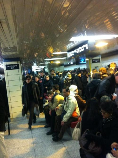 expectdelaysca:  No overcrowding on the platform at all. Thank you to Catherine