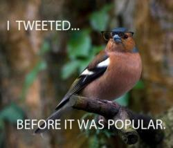 I tweeted…..BEFORE it was popular.