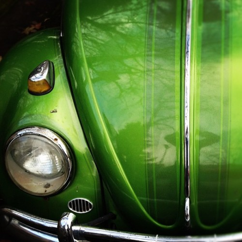 Green Volksy, Part 5. #vw #buglove #green #eugene #oregon #volkswagen #lomo-fi (Taken with instagram)